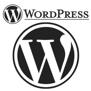 WordPressテーマを使用してカスタマイズするときのポイント